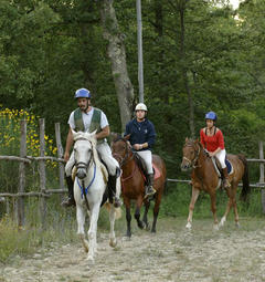 The Agriturismo's Stables